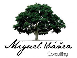 Miguel Ibáñez Consulting